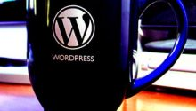 wordpress kategori